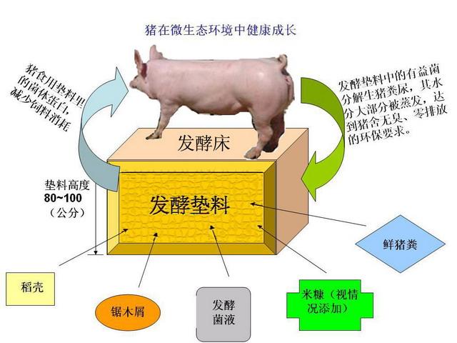 发酵床示意图